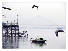 Born Free (Satyaki Basu) Tags: summer india nature water canon river landscape photography dr powershot 2008 kolkata bengal jagannath ghat basu hoogly howrah greatphoto mallick satyaki top20travel s5is theindiatree goldstaraward 5wordcommentsarewelcome gettyimagesmiddleeast