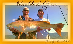 March 12, 2008 - While Fishing Aboard TEAM BRODIE CHARTERS Travis Hartzell And Matt Zvonkovic Landed This Big Bull Redfish On The Bellefontaine Reef In The Mississippi Sound - Photo By Capt. Robert L. Brodie of TEAM BRODIE CHARTERS (teambrodiecharters) Tags: red fish beautiful fishing bull redfish bigred anglers charterboat spottail guideservice bottomfishing lighttackle reeffishing mississippisound bigredfish beautifulfish bullredfish teambrodiecharters lighttacklefishing mattzvonkovic travishartzell bellefontainereef