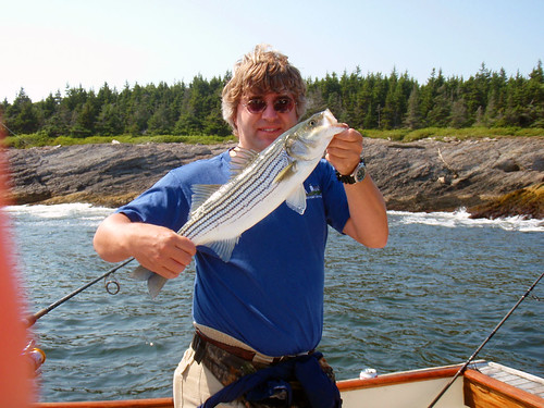 Blackjack charters maine
