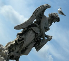 Angiolone (brilliantdandy) Tags: rome roma statue angel seagull castelsangelo angelo statua brilliant dandy gabbiano brilliantdandy