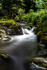 East Lyn River (Pete Watson Photography) Tags: 10stopnd devon forest july longexposure milky naturalview nature pebbles river rivervalley riverside rock rocks southwest stream summer valley water watersmeet whitewater woodedvalley woodland woods zmonths â©petewatsonphotography