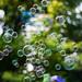 Bubble Bokeh [explored]