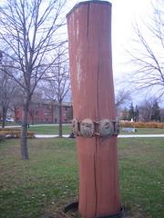 """""""Tree Bracelets"""" by Coral Lambert"""