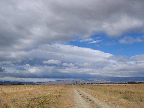 The crowded Otago Rail Trail