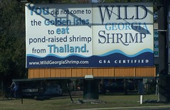 Wild Georgia Shrimp billboard (buy local)