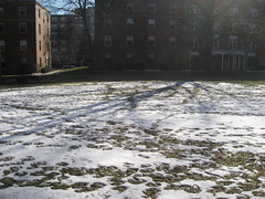 Snow on the Quad