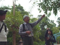 顏損綠人李文哲為同學解說自然生態