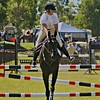 Show Jumping - Look Left