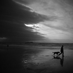 Walking the Dog... (Formidable Photography) Tags: uk england bw dog reflection beach liverpool moo crosby capitalofculture markmcgowan liverpool08 formidablephotography