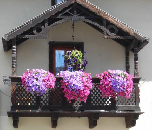 gruppo finestre e balconi fioriti - flowered windows & balconies