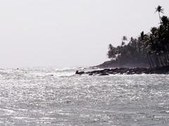 Saint Joseph Island (shore) (Myrelingot) Tags: bagne frenchguyana guyanefranaise lesdusalut lesaintjoseph