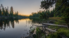 Evening at Dark Lake (Middle aged Nikonite) Tags: dark lake wrights california sunset forest trees nature landscape outdoor water reflections nikon d7200