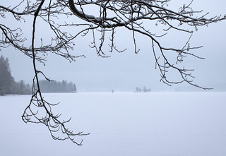 Misty Winter Lake
