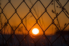 Behind the fence - HFF!
