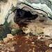Илийина пещера
