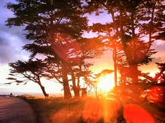 iPhoneography #27 (ShanLuPhoto) Tags: ocean sanfrancisco california light sunset sea beach flare oceanbeach coastline     iphoneography