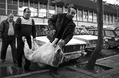 Karabach PXT5_080511_2401 (Petr Kleiner) Tags: boy people man car flesh cow market armenia volha nagornokrabach