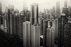City Jungle (maxplx) Tags: canon 50mm mark iii hong kong 5d 12