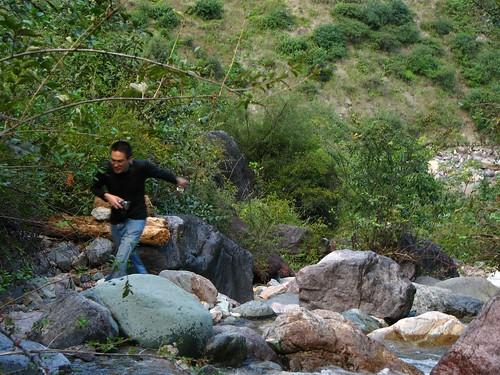 Hiking up a creek