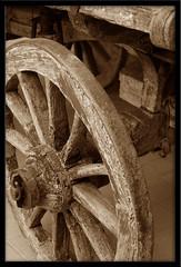 vecchia ruota (manuz73) Tags: sepia nikon piemonte cuneo autunno antico barolo legno ruota vecchio ottobre seppia d40 nikonclub visitpiedmont mcb1806