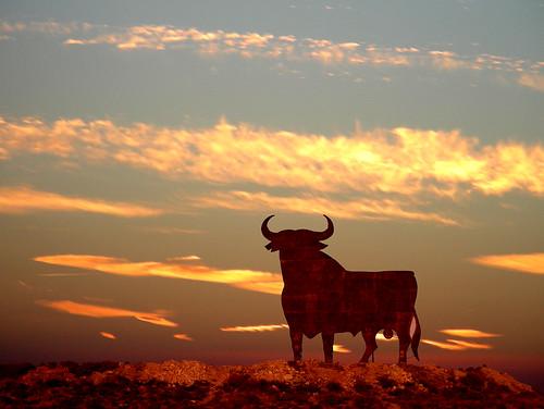 Un Toro Corneó a su matador en plena corrida