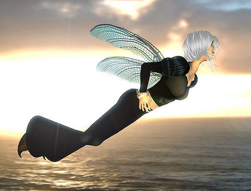 9-Business Faerie_Zak Fly Wings