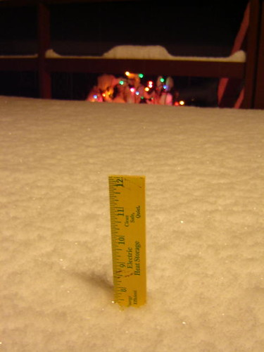 Eight inches, give or take.