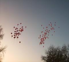Hannah's balloons