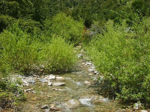 Río Huirinlil en Diciembre