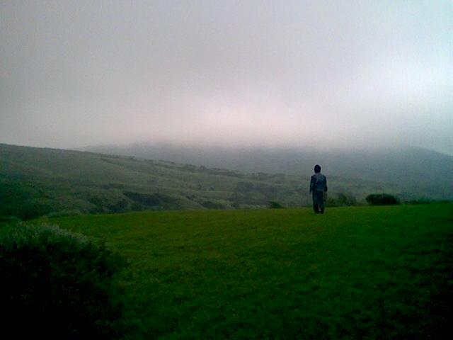 擎天崗草原