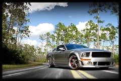Roush Mustang on Custom SevasForged R5 (GREATONE!) Tags: street trees sky ford car pine clouds silver photography nikon power florida miami wheels sigma automotive william tires pony chrome mia mustang d200 custom rims fla stern f28 forged roush r5 2470mm sevas