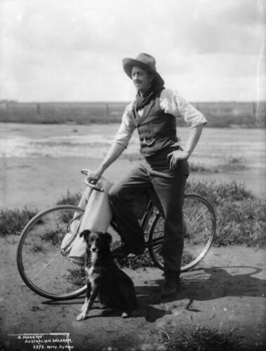 A modern Australian shearer