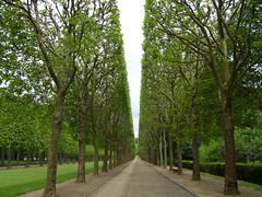 Coulee verte parc de Sceaux