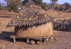 Grain storage structure and clay pots, Southeast Sngal (West Africa) (gbaku) Tags: africa roof west architecture town construction village rice african grain villages case storage architectural foundation huts roofs westafrica tropical afrika senegal anthropologie agriculture shelter towns anthropology millet riz mil cases shelters africain afrique ethnography ethnology foundations sngal africaine westafrican ethnologie bedik afrikas