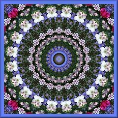 JFF4-2 (Lyle58) Tags: abstract geometric circle kaleidoscope mandala symmetry zen harmony reflective symmetrical balance circular kaleidoscopic kaleidoscopes kaleidoscopefun kaleidoscopesonly