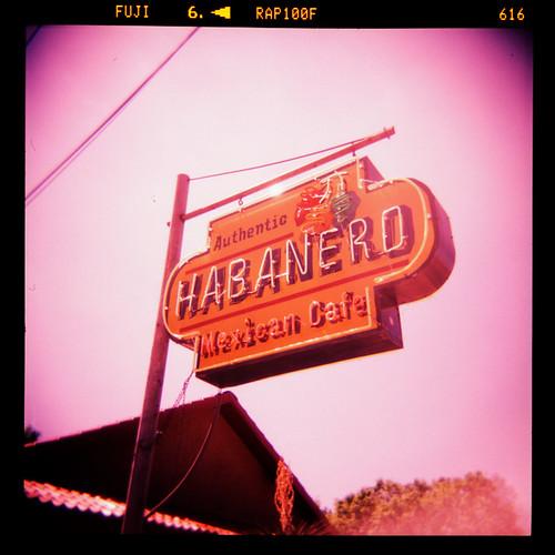 Habanero #4