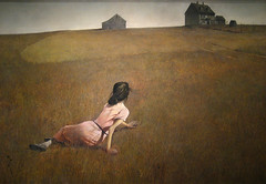Christina's World (Maulleigh) Tags: world new york city art museum modern moma andrew wyeth christinas polio