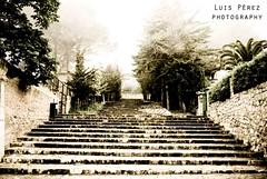 foggy day (luispf39) Tags: old stairs foggy antigua staircase oldphoto mallorca niebla islas escaleras baleares valldemossa islasbaleares fotoantigua escalinata luispf39