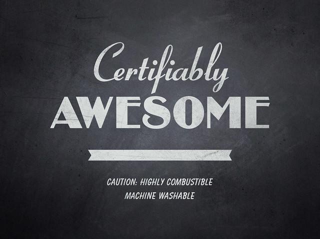 certifiablyawesome_RachelDangerfield