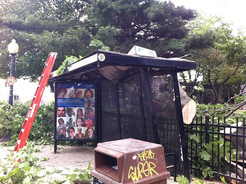 Bus Shelter damaged