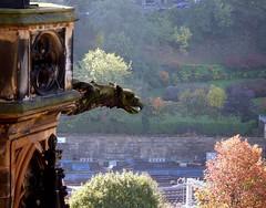 Watching (Cul 9) Tags: scotland edinburgh gargoyle scottmonument