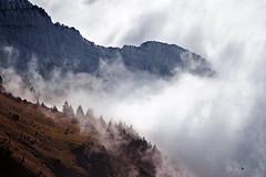 Mt. Pilatus in clouds (tigrić) Tags: panorama cloud mountain nature forest landscape switzerland altitude pilatus hight スイス explore267