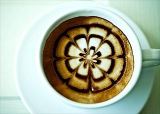 Coffee Flower (Power)!
