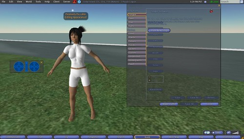 Second Life: Making Clothes: 7 - Make Undershirt Next, Take Off Outer Clothes