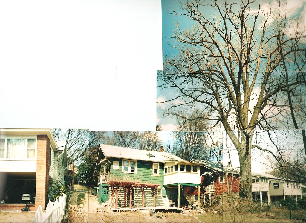 Green House with Garden Rear Yard Spring 1999