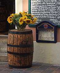 Bamberg (bill barber) Tags: flowers plants flower germany garden menu deutschland bavaria restaurant bill main barrel steps bamberg william franconia holes unesco container cobblestone pot german elements barber alemania cobbles planter tyskland allemagne soe bundesrepublik casanova germania alemanha windowbox duitsland drainage deutsche rivercruise photoshopelements lallemagne regnitz frankonia billbarber steigerwald doitsu niemcy njemaka saksa nmetorszg deilmann passionphotography njemacka  nemecko mywinners anawesomeshot ultimateshot diamondclassphotographer flickrdiamond envyofflickr heartawardsgroup extraordinarycompositions wdwbarber williambarber peterdeilmann bbarber1 mscasanova germnia enoughroom plantsneeds