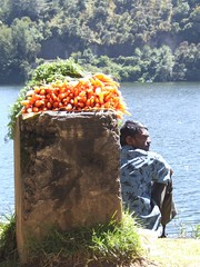 Famous for their carrots (e900) Tags: india kerala munnar