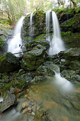 Cataract Falls (Aaron Siladi) Tags: california winter fern green water waterfall moss rocks marin falls mttam dxo tamalpais mossy sigma1020mm cataractfalls