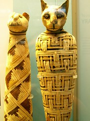 Mummy Kitties (Whiskers and Whispers (The Future is Feline)) Tags: cat feline kitty egyptian meow mummy britishmuseum bastet mummified egyptinlondon