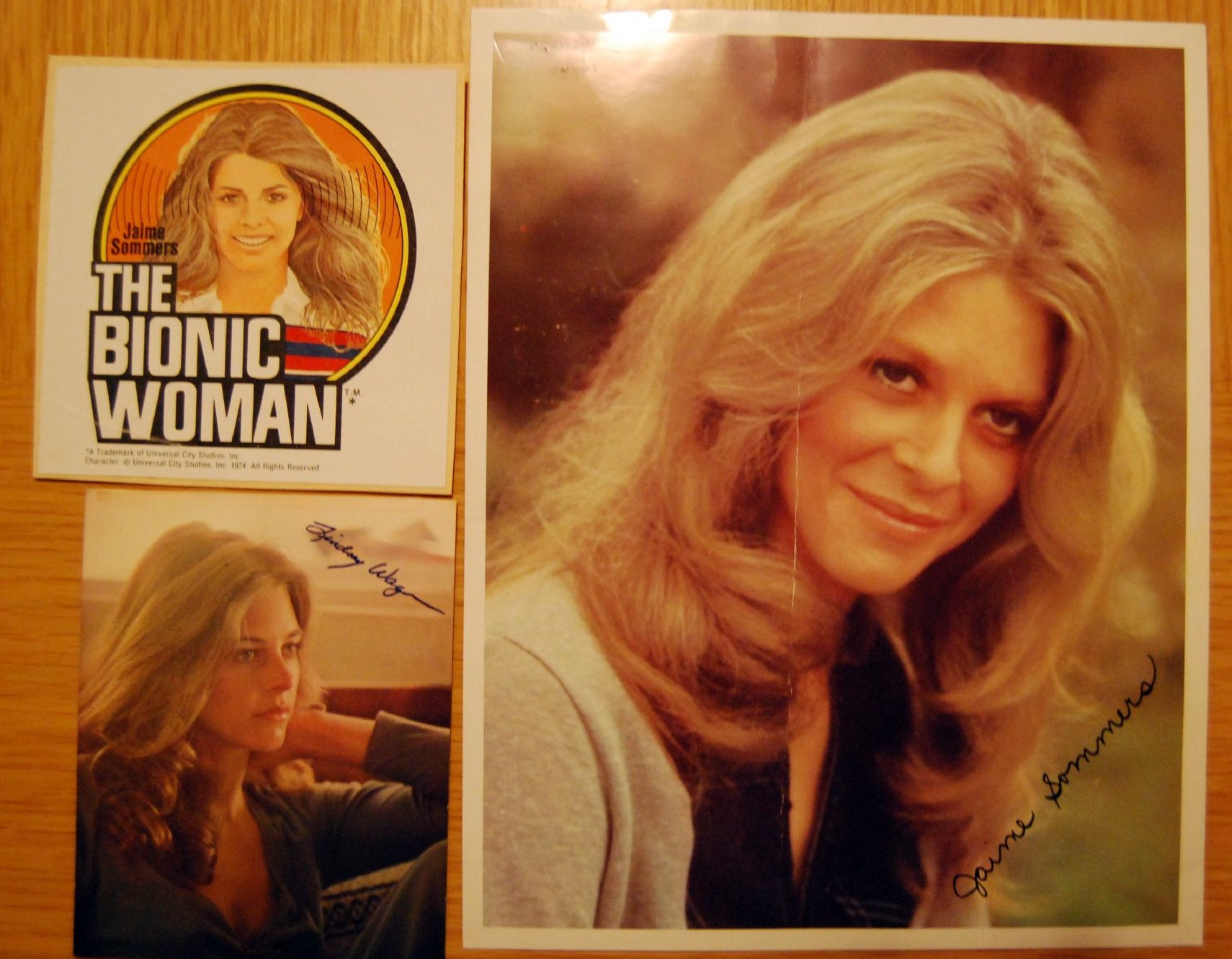 Bionic Woman Original Bionic Woman Lindsay Wagner
